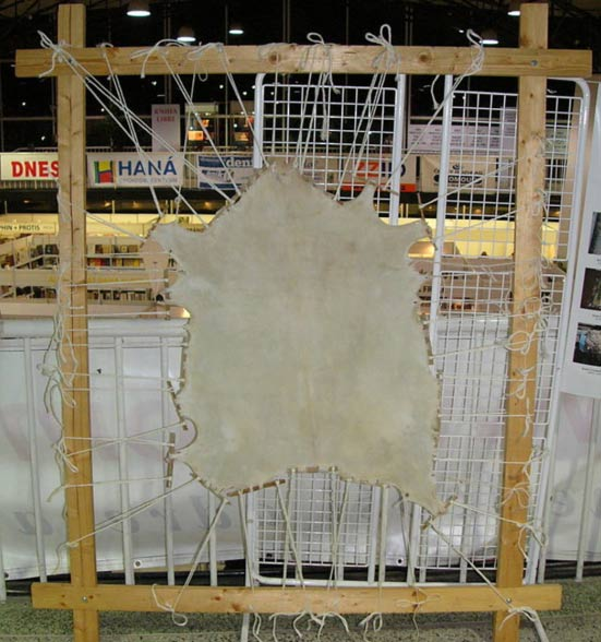 Central European type of finished parchment made of goatskin stretched on a wooden frame