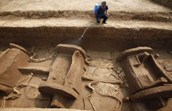 The 3,000-year-old remains of five chariots and 12 horses - Luoyang
