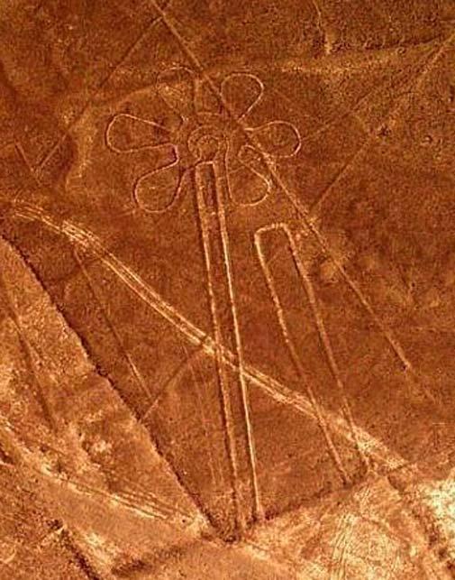 Nazca 'flower' geoglyph.