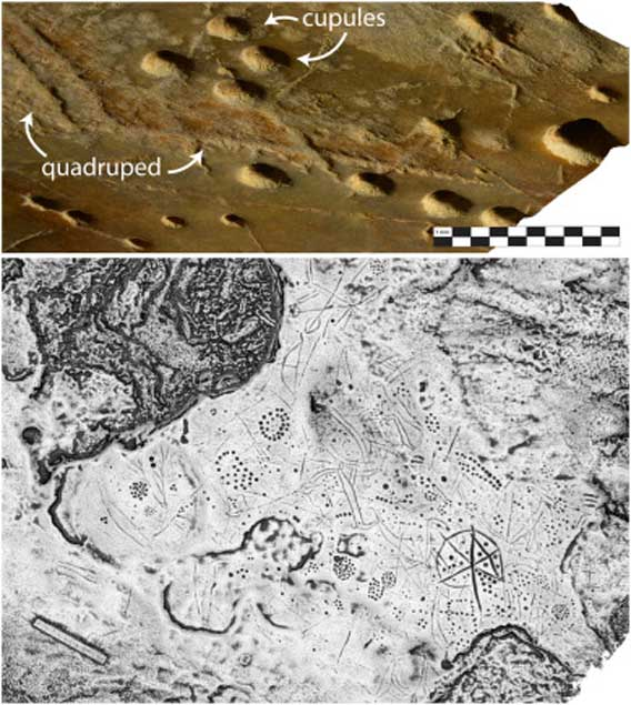 Above: An image, generated from a high-resolution 3D model, showing the range of relief or depth in the carving of cupules, antlers, and other scratches in the Asphendou Cave surface. Below: A gray-scale depth map of the Asphendou Cave petroglyphs. (S. Murray and P. Sapirstein)