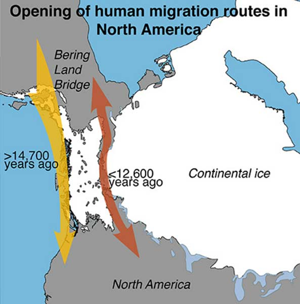 Opening of human migration routes in North America.