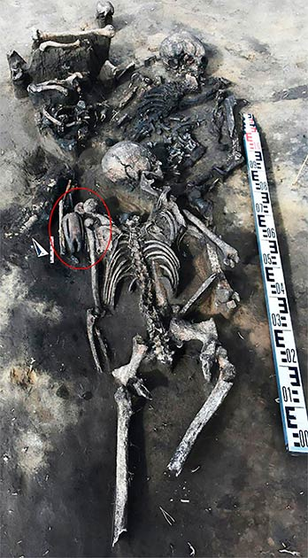The masked figurine (circled) was found at the shoulder of a woman who was buried in a mass grave discovered in Western Siberia. (Novosibirsk Institute of Archeology and Ethnography/The Siberian Times)