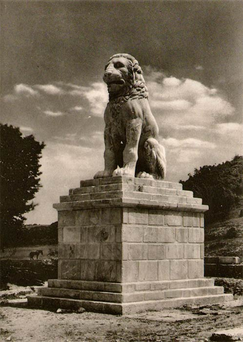 The lion from the summit of the Amphipolis Tomb restored and resurrected just south of Amphipolis in the 1930s (Image: Provided by the author - courtesy Jacques Roger, late 1930s).