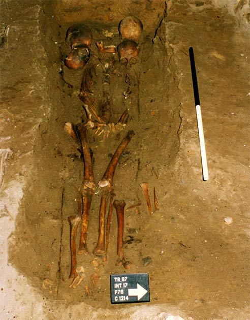 The six-headed chief was discovered within a medieval Scottish burial. (FAS Heritage)