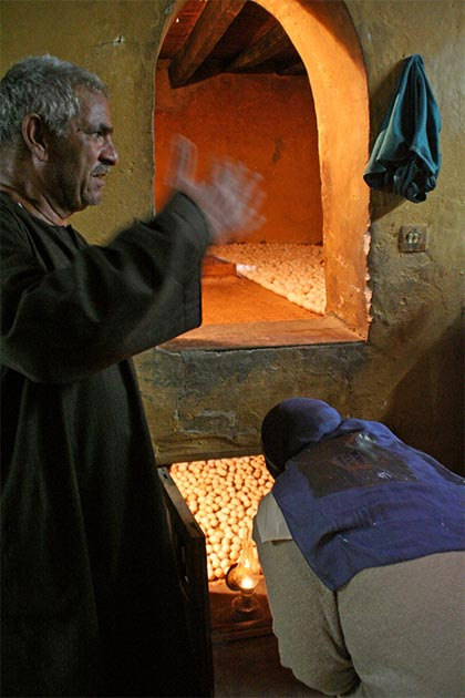 Two rows are still the norm for Egyptian egg ovens with a small entrance. (Lenny Hoferwerf / Courtesy of Food And Agriculture Organization of the United Nations (2006) / Reproduced with permission)