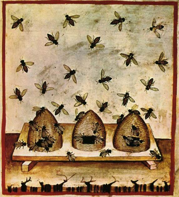 Beekeeping as depicted in the Tacuinum Sanitatis, an Arab medical text by Ibn Butlan of Baghdad, describing the benefits and harmful effects of different foods and plants. (Public domain)