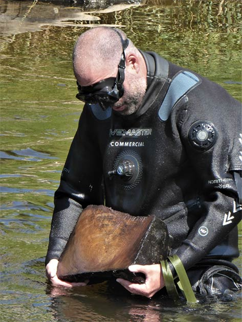 Bob Armstrong, from Wessex Archaeology Coastal and Marine Team, as he retrieves a sample of bridge timber from the river. The ADHS team warns that the remains of the medieval bridge are under threat. (ADHS)