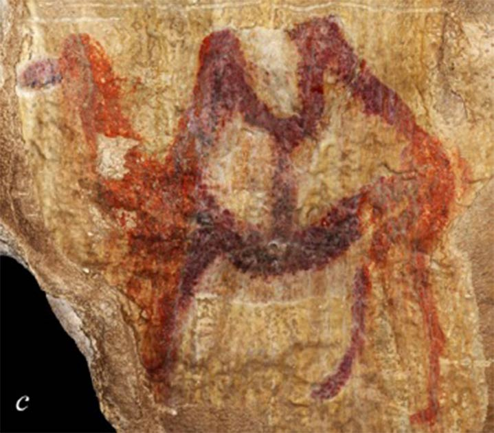 Images of camels and other animals have been discovered in caves in the southern Urals. (Yuri Esin)