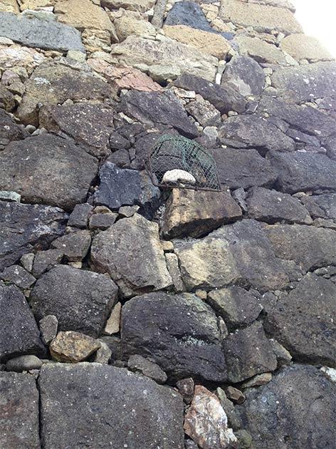 Ubagaishi stone in a wall at Himeji Castle (CC BY-SA 3.0)