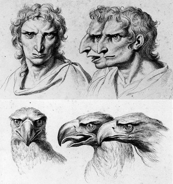 Illustration comparing an individual with an aquiline nose, heavy brow and prominent nose arch with the head of an eagle by Charles Le Brun (Image: CC BY 4.0).