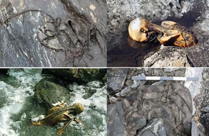 Items recovered from melting glaciers including a Bronze Age leather shoe