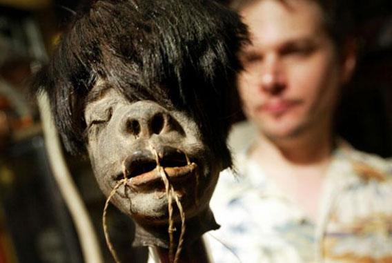 A Jivaro shrunken head