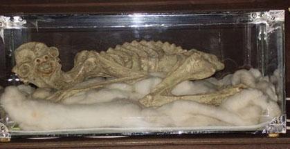 Kappa mummy