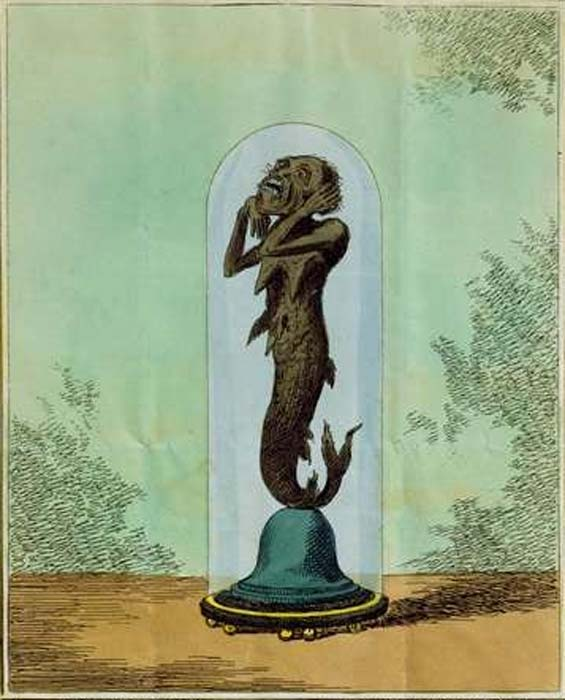 A depiction of what would later come to be known as the Fiji mermaid, commissioned by Captain Samuel Barrett Eades
