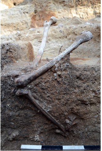 Position of the leg bones in feature 1/4 - the standing burial.