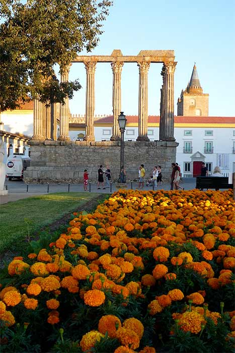 The manicured gardens of the historical square, with the Temple, the museum (formerly the Archbishop's palace) and the northern tower of the cathedral in the background (Luiscutileiro/ CC BY-SA 3.0)