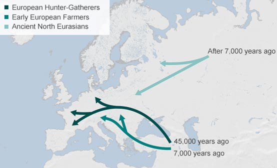 A map showing the proposed migration of people into Europe