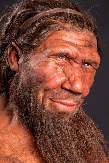 An imaginative model of a Neanderthal.