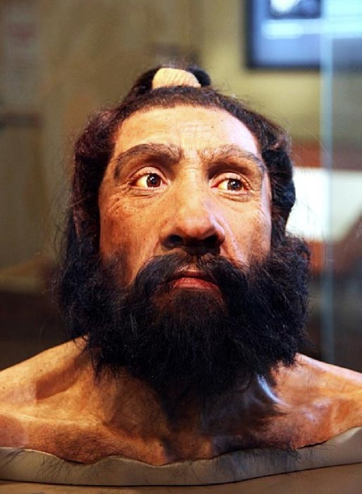 A model of an adult Neanderthal male head and shoulders on display in the Hall of Human Origins in the Smithsonian Museum of Natural History in Washington, D.C. (CC BY-SA 2.0)