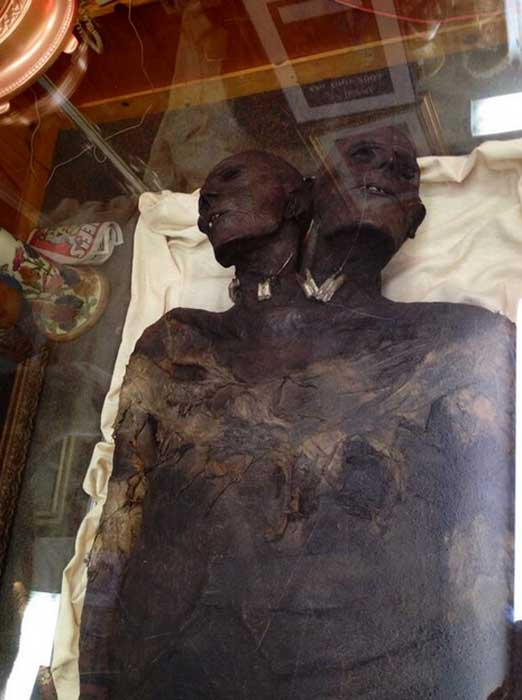 The mummy of Kap Dwa.