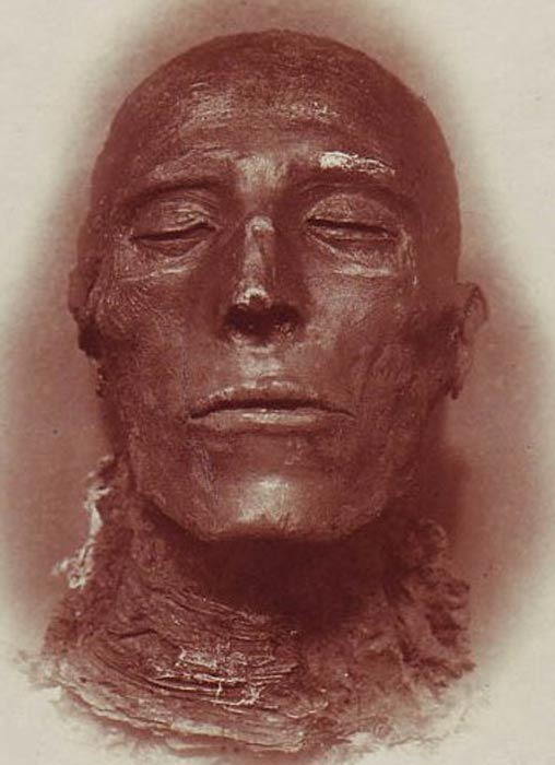 Head of the mummy of Seti I.