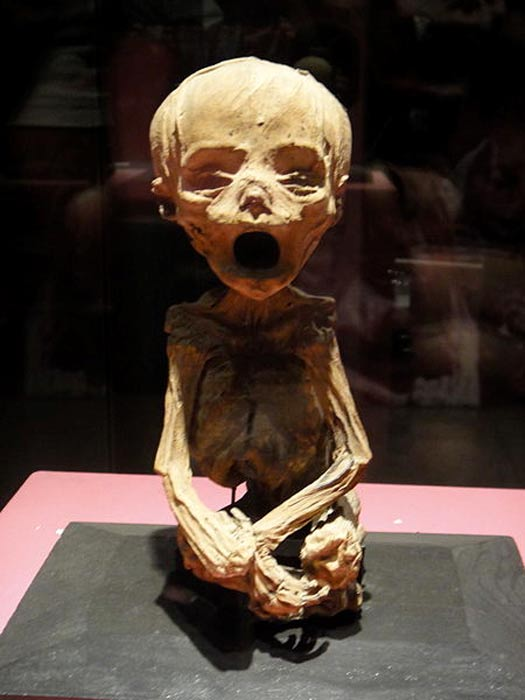 The mummy of a baby in the museum.