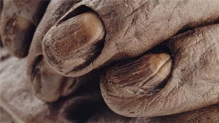 nails of Old Croghan Man - Clonycavan Man: misterio de 2300 años