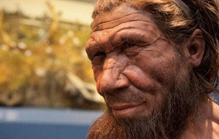 Facial reconstruction of a Neanderthal
