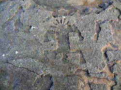 Rare petroglyphs uncovered by freak weather in Hawaii