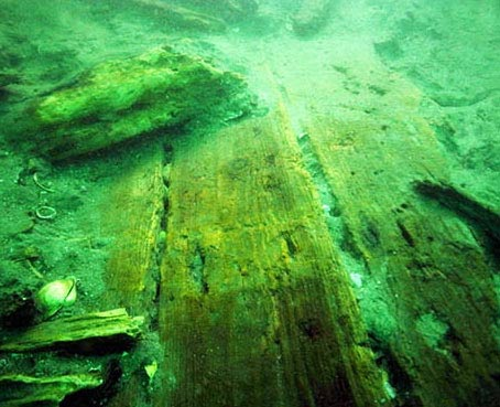 Planks from the mongolian wreck in Japan
