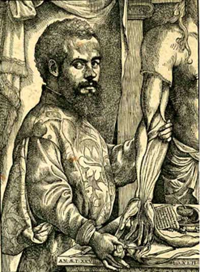 A portrait of Vesalius from De humani corporis fabrica.