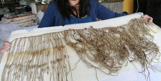 Discovered quipus in Peru