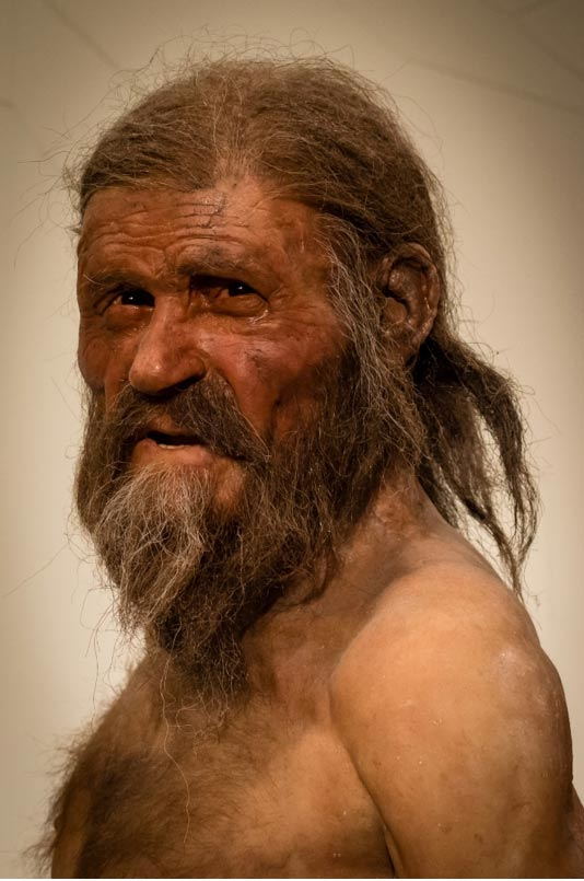 A reconstruction of what Ötzi may have looked like