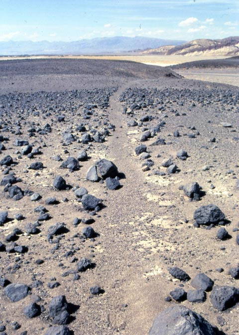 A ritual pathway in Death Valley.