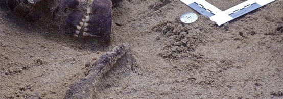 The skulls came from a Romano-British burial ground in Poundbury