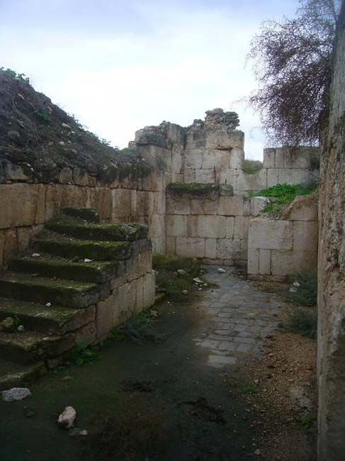 The ruins of the Minya palace, 2009.
