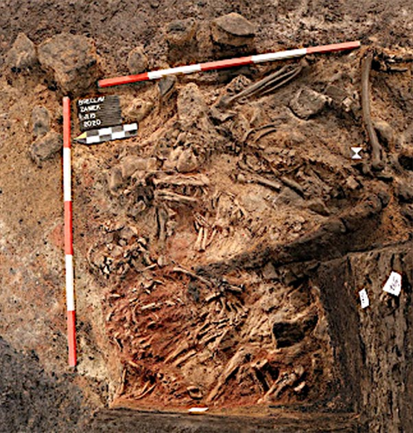 Human sacrifice remains found in the South Moravia, Czech Republic. (Archaia Brno)
