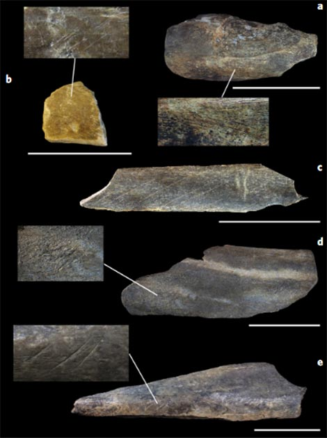 A selection of radiocarbon dated bone specimens from Bacho Kiro Cave with surface modifications. (Fewlass et al. 2020)
