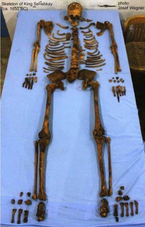 The skeleton of Pharaoh Senebkay.