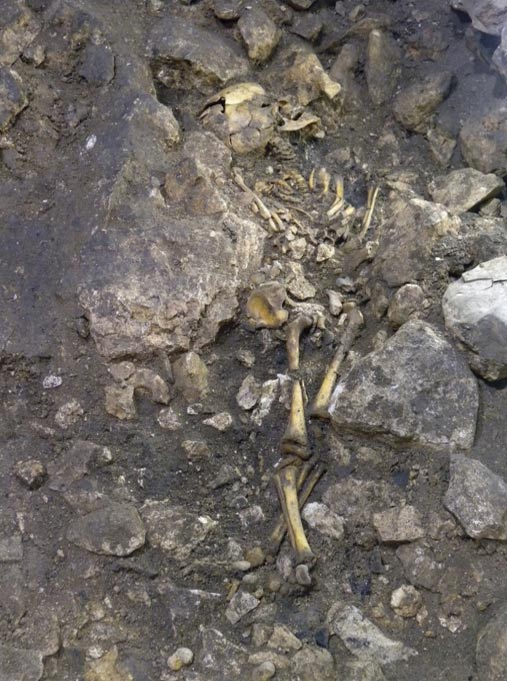 One of the skeletons from the current El Portalon cave study