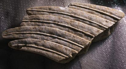 Part of a sphinx's wing found in the Amphipolis tomb