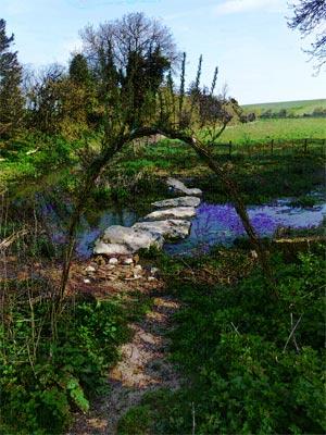 Stonehenge Springs