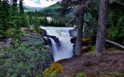 Waterfalls in the Canadian Rockies (Jasper National Park) (CC BY-NC-SA 2.0)