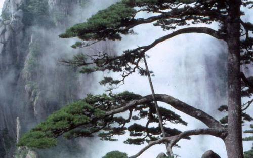 Scenery in Huangshan (Public Domain)