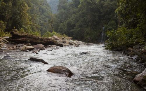 River at the foothill of Ciudad Perdida (Photo by Ancient-Origins.net)