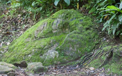 Mountain Range Stone at Ciudad Perdida (Photo by Ancient-Origins.net)
