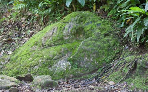 Mountain Range Stone at Ciudad Perdida (Photo by Ancient-Origins.net)
