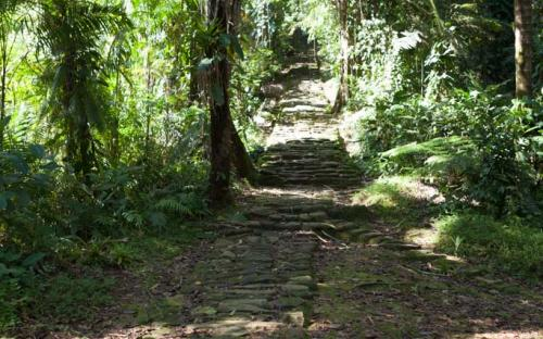 Long Path at Ciudad Perdida (Photo by Ancient-Origins.net)