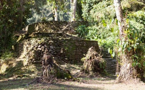 Multiple houses at Ciudad Perdida (Photo by Ancient-Origins.net)