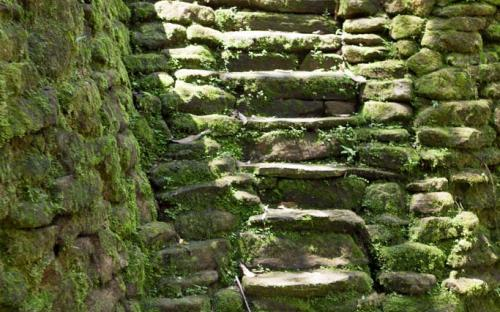 Steep steps at Ciudad Perdida (Photo by Ancient-Origins.net)
